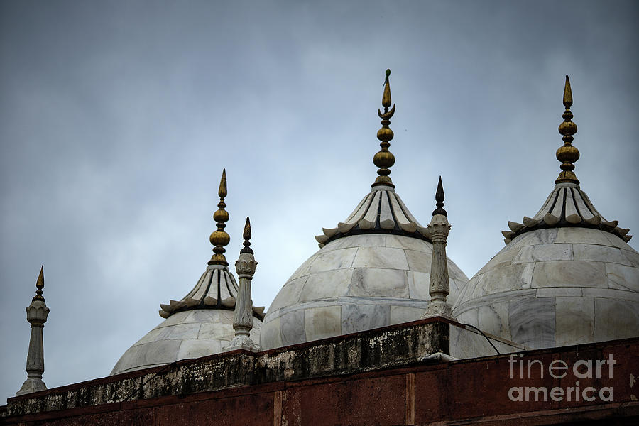 Beautiful Architecture  Mughal Empire Photograph by Skaman306