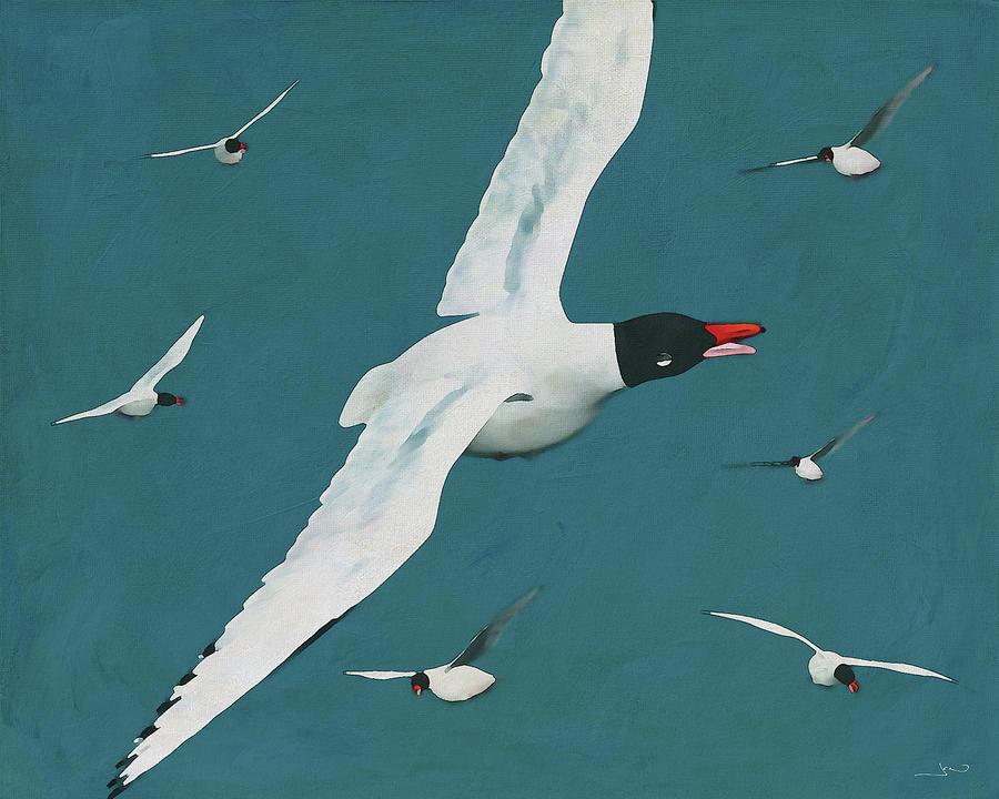 Beautiful Black Headed Gulls by Jan Keteleer