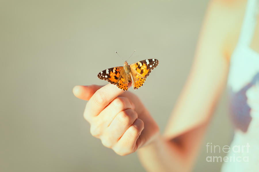 Pets Photograph - Beautiful Butterfly Sitting On The Girl by Viktor Gladkov