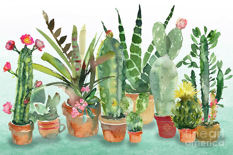 Beautiful Cactus Garden by Jean Plout