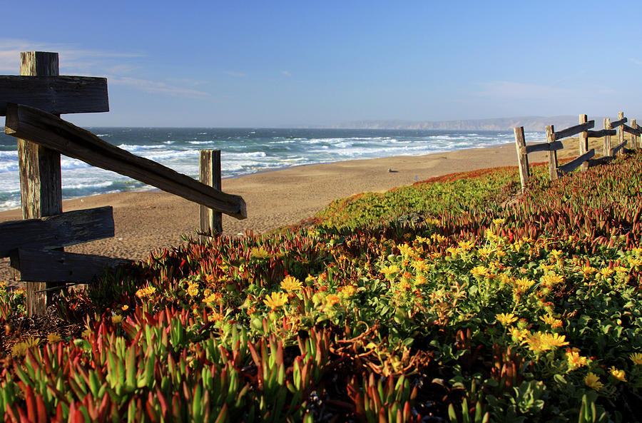 Beautiful California Beach Scene And Photograph by Ejs9