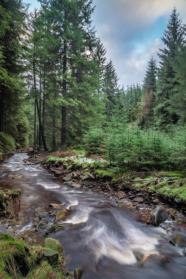 Landscape Photograph - Beautiful Ethereal Style Landscape Image Of Small Brook Flwoing  by Matthew Gibson