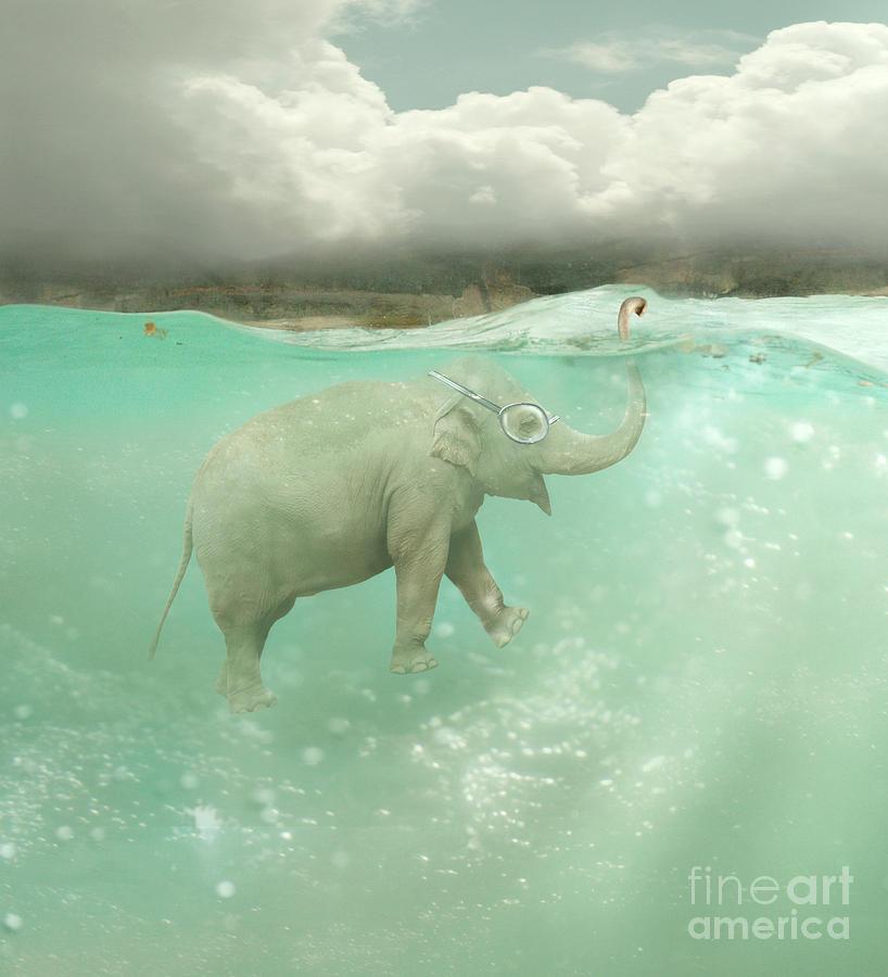 Sub Photograph - Beautiful Funny Elephant Swimmer by Valentina Photos
