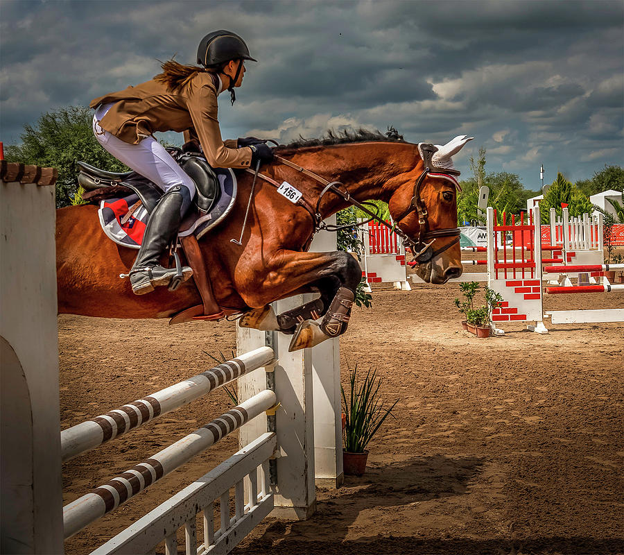 Beautiful Jump by Barry Weiss
