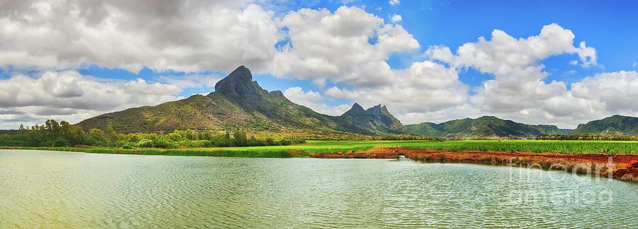 Beautiful Landscape. View Of A Sugarcane And Mountains. Mauritiu Photograph