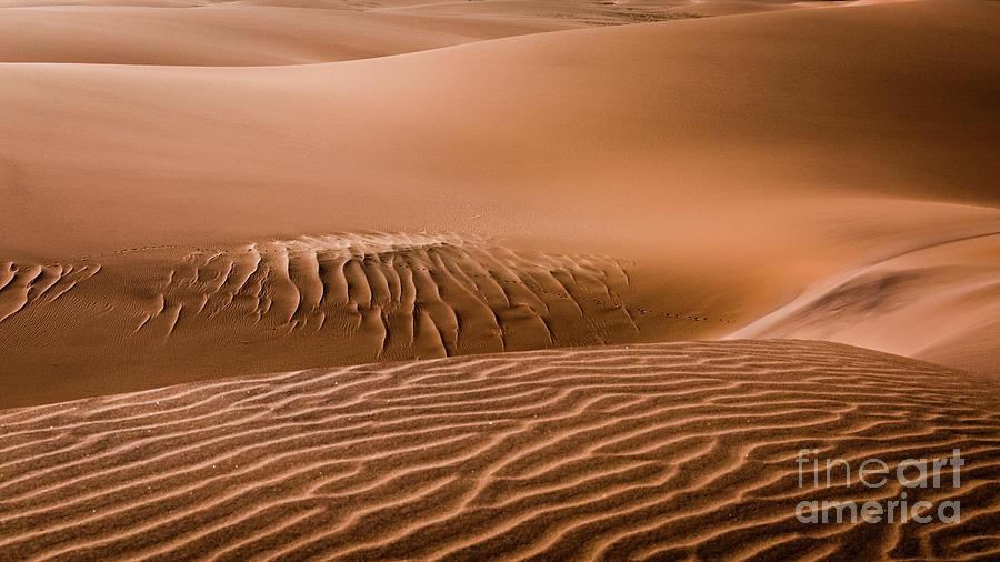 Landscape Photograph - Beautiful Namib Desert 2 by Lyl Dil Creations