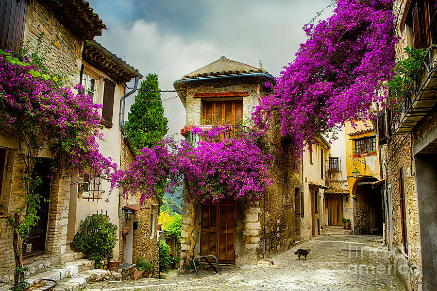 Romance Photograph - Beautiful Old Town Of Provence by Konstanttin