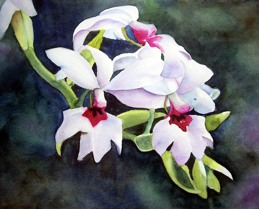 Beautiful Orchid by Beth Fontenot