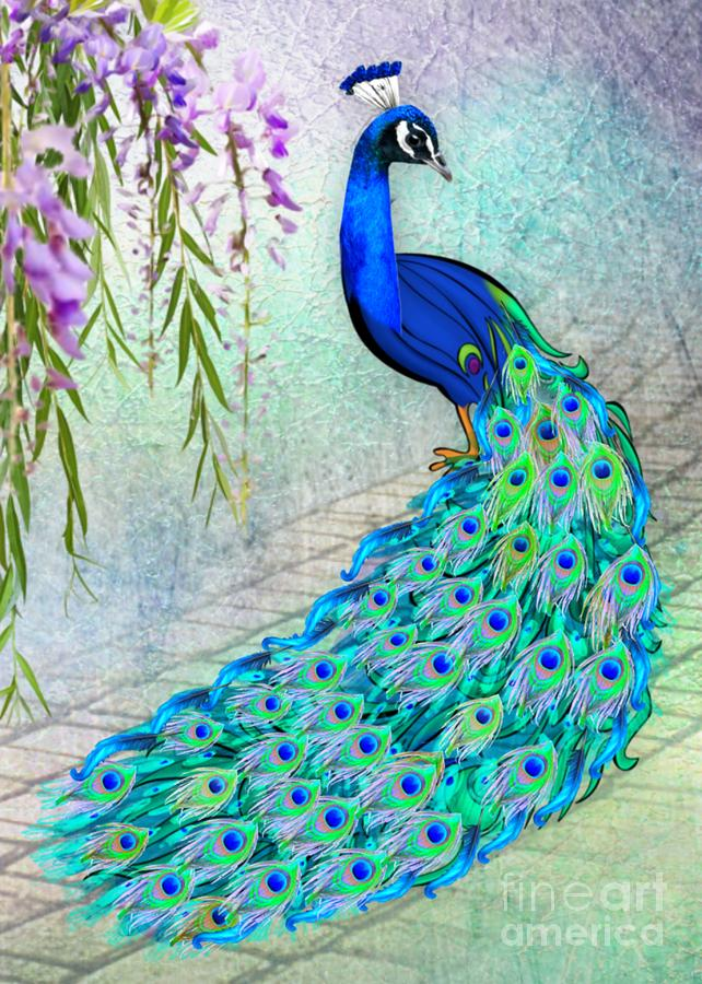 Beautiful Peacock by Morag Bates