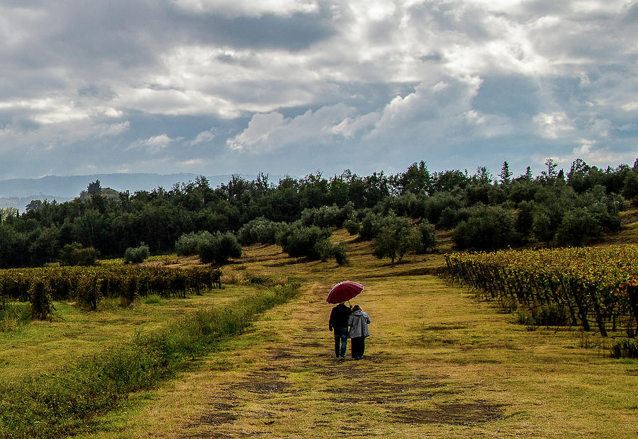 A Walk in the Rain by Fred Greco