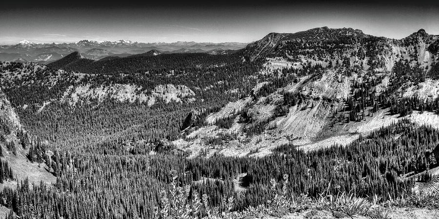 Beautiful Sourdough Ridge by David Patterson