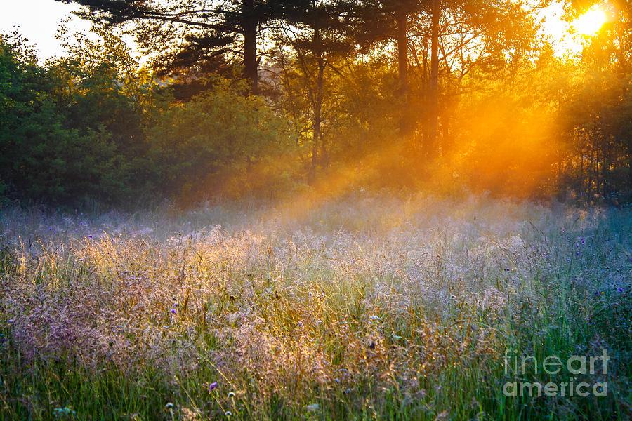 Sunshine Photograph - Beautiful Sunrise Over A Summer by Yanikap