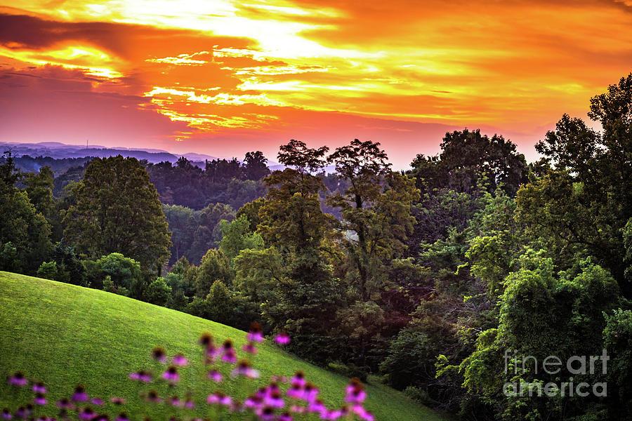 Beautiful Sunset  by Lisa Lemmons-Powers