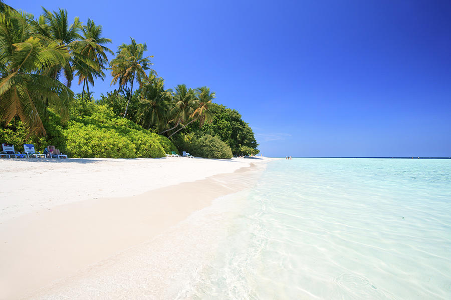 Beautiful Tropical Sandy Beach In The Photograph by Matteo Colombo