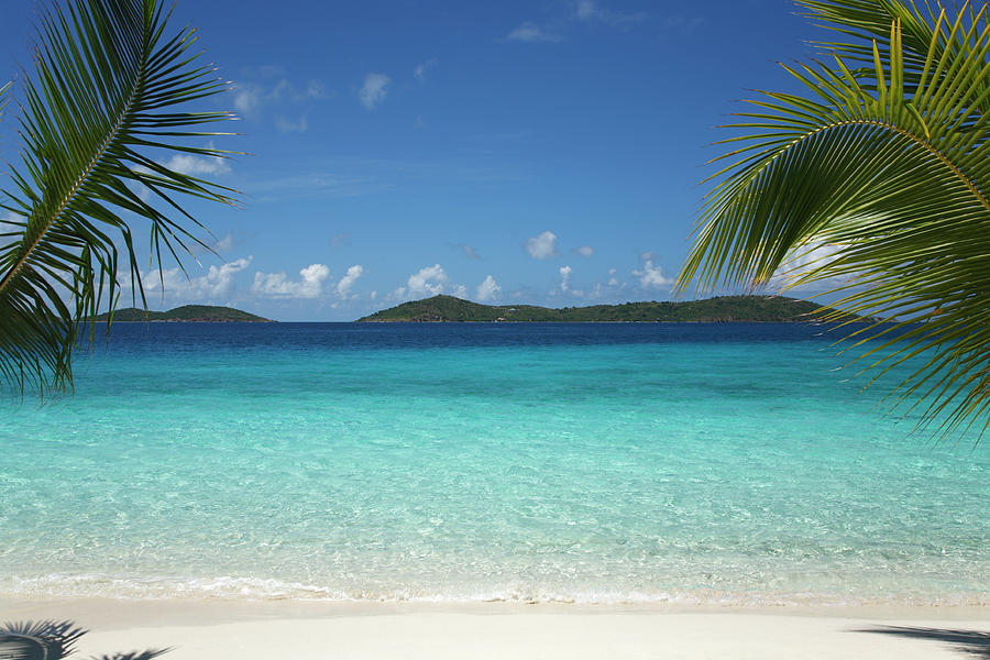 Beautiful Tropical Scene At A  Beach In Photograph by Cdwheatley