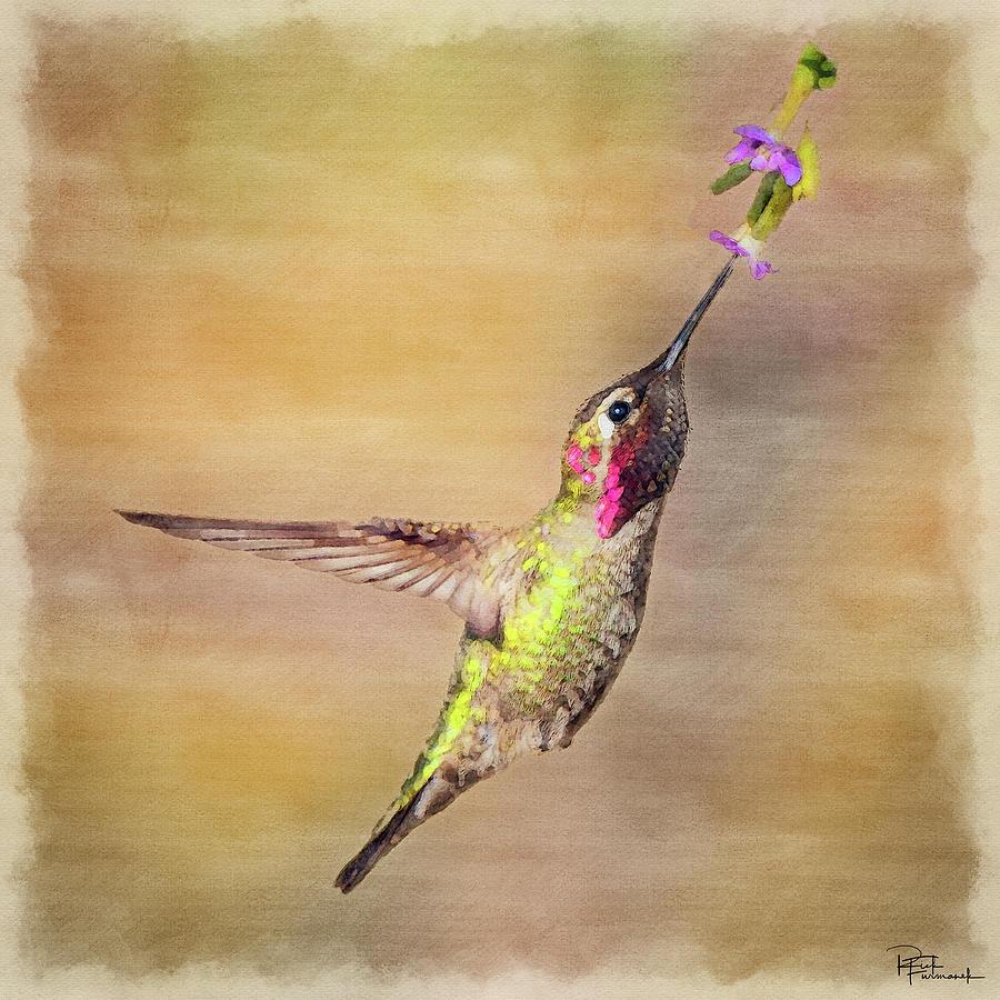 Beauty in a Pause in Digital Watercolor by Rick Furmanek