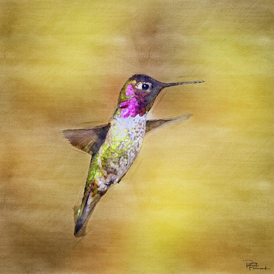 Beauty in MidAir in Digital Watercolor by Rick Furmanek