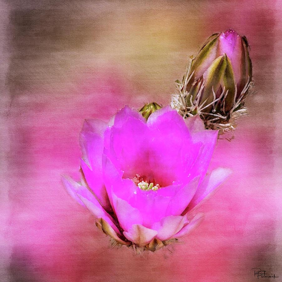 Beauty in the Details in Digital Watercolor by Rick Furmanek