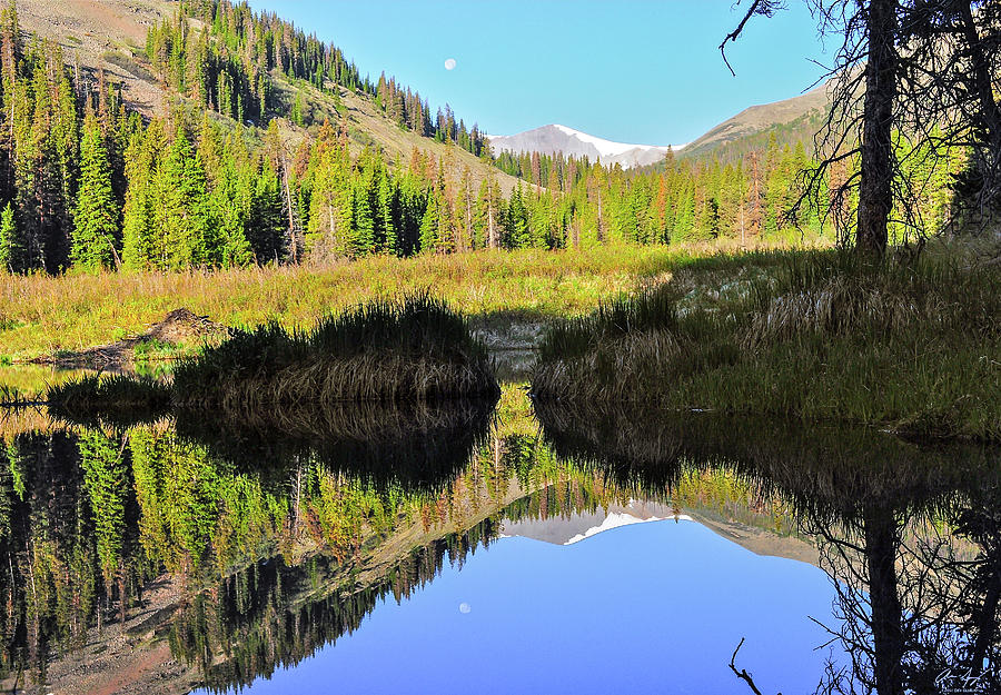 Pond Photograph - Beaver Pond Reflection by Aaron Spong