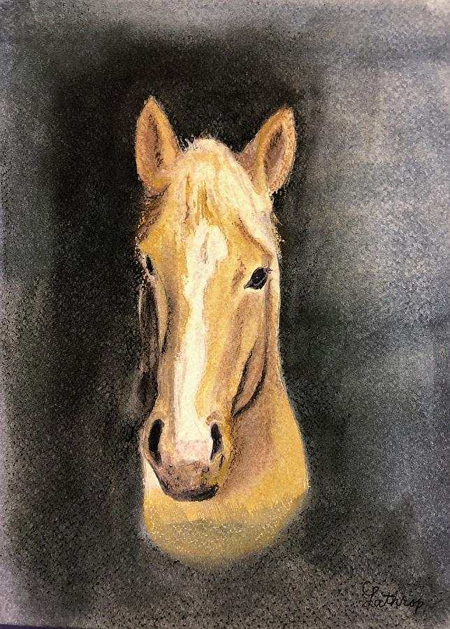 Becky's Horse by Christine Lathrop
