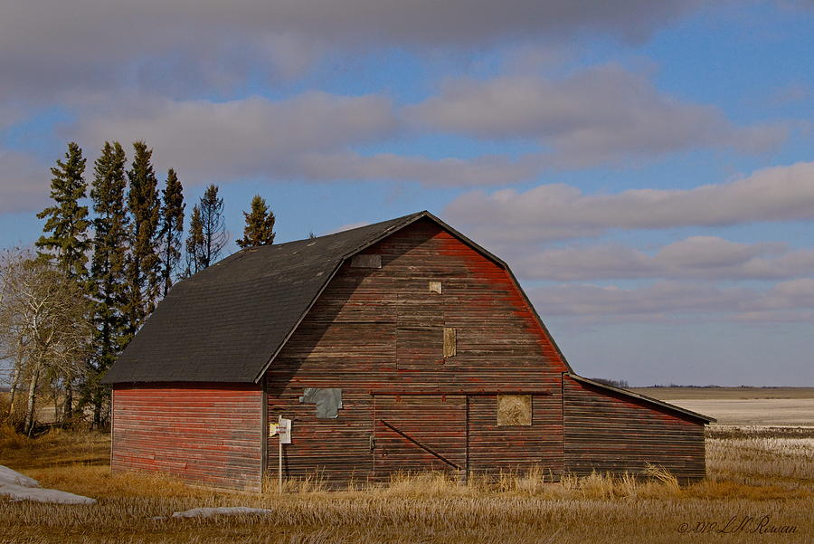 Prairie Photograph - Red Barn On Blue Prairie Sky by Images Undefined