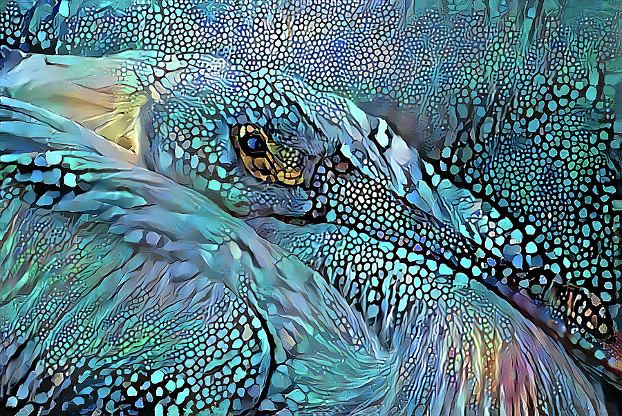 Bedazzled Pelican by HH Photography of Florida