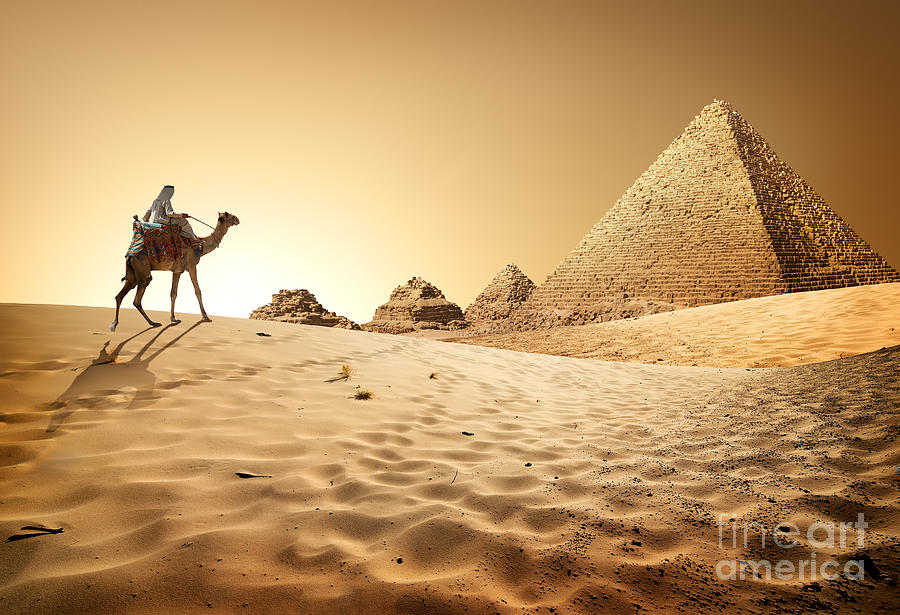 Heat Photograph - Bedouin On Camel Near Pyramids In Desert by Givaga