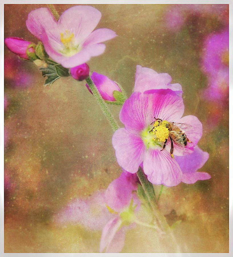 Bee Love, Bee Kind by ELAINE MALOTT
