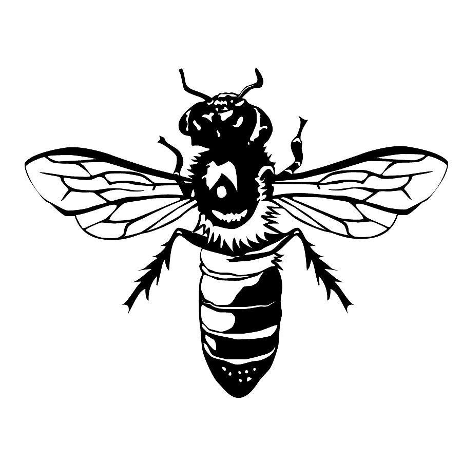 Bee Digital Art - Bee Nice by Jesse Chaidez