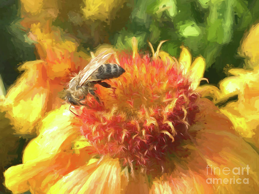 Bee Digital Art - Bee on Flower by Susanne Arens