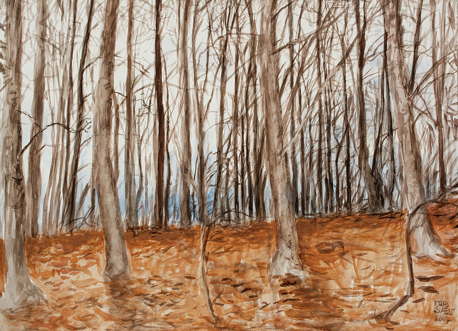 Beech Forest 2 by Hans Egil Saele