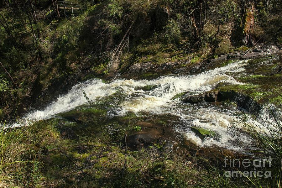 Beedelup Falls, Pemberton, Western Australia  by Elaine Teague