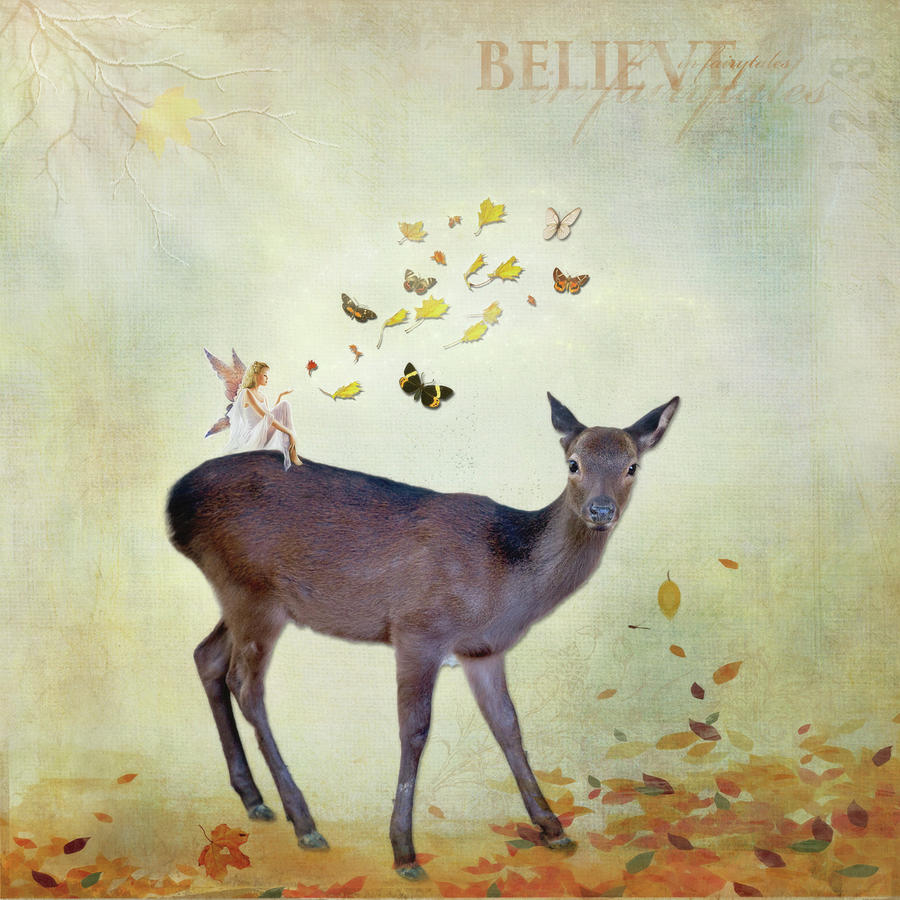 Believe by Sue Collura