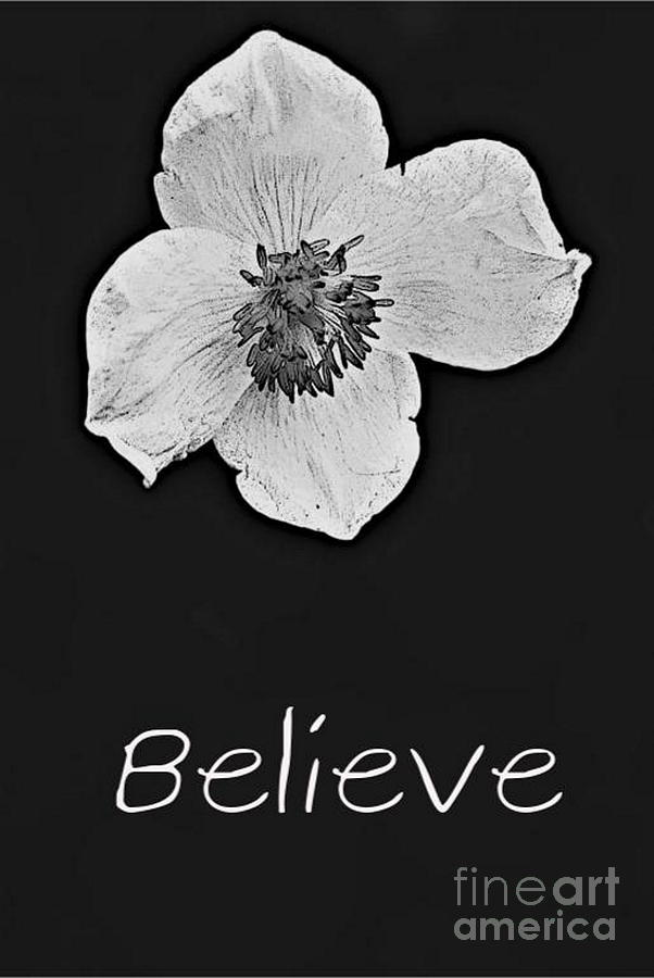 Believe by Tracey Lee Cassin