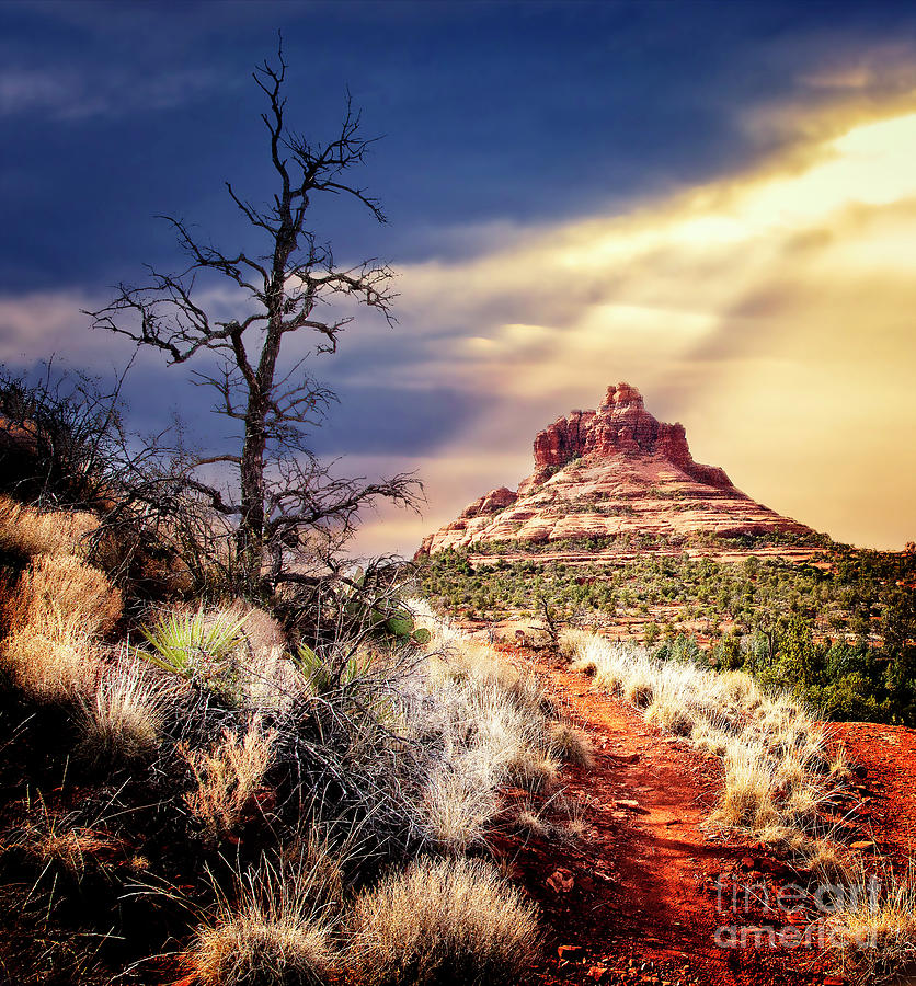 Arizona Photograph - Bell Rock by Scott Kemper