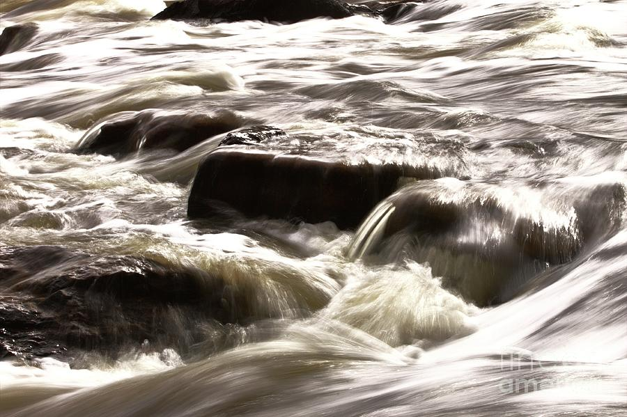 Bells Rapids - Swan River - Perth Western Australia -2 by Carolyn Parker