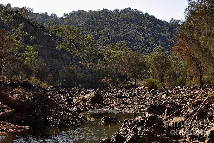 Bells Rapids - Western Australia - Dry by Carolyn Parker