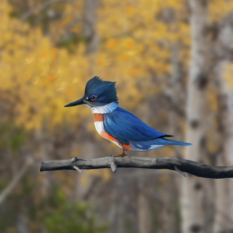 Belted Kingfisher in Aspens by Mark Miller