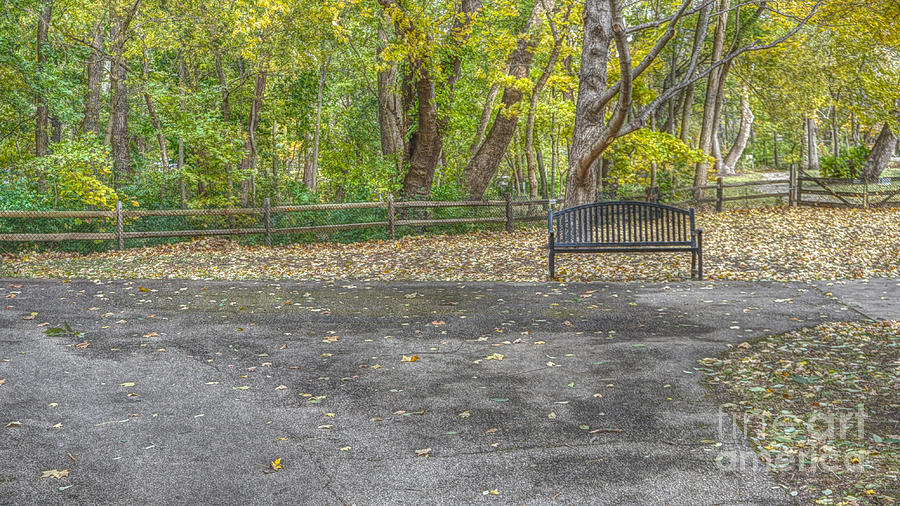 Bench @ Sharon Woods by Jeremy Lankford