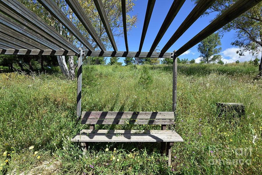Bench among wild flowers III by George Atsametakis