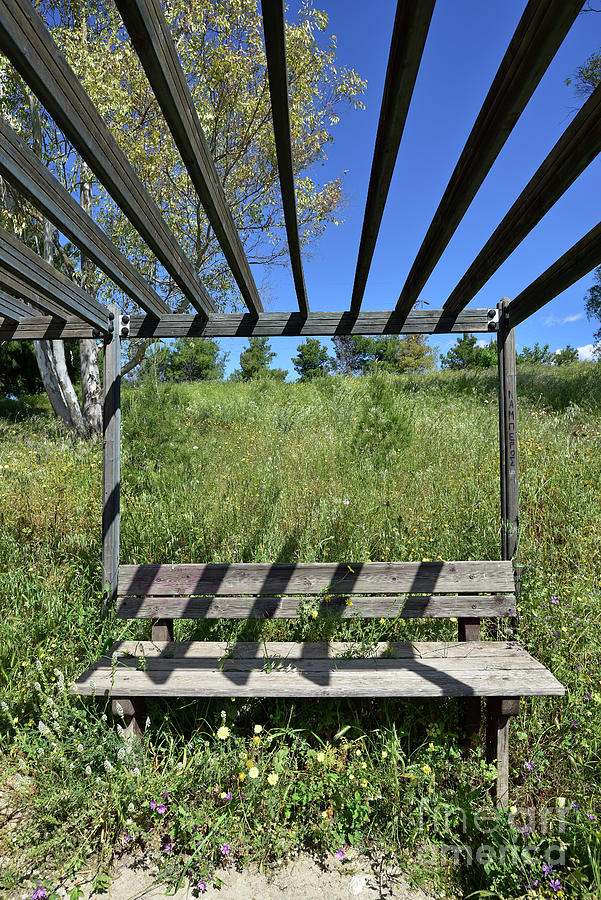 Bench among wild flowers IV by George Atsametakis
