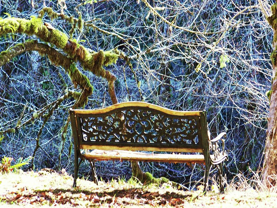 Bench by the River by Julie Rauscher