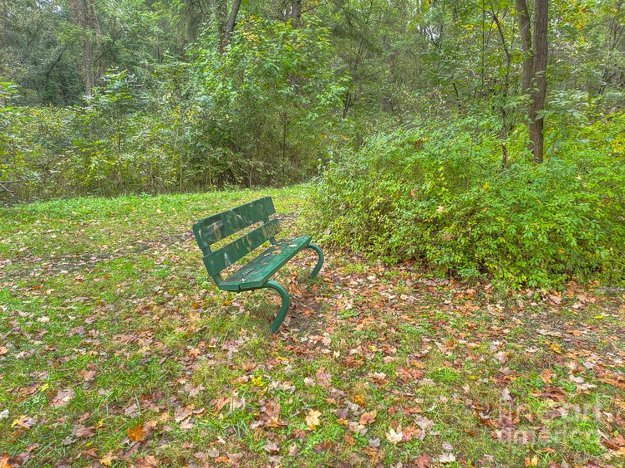 Bench overlooking Pine Quarry by Jeremy Lankford