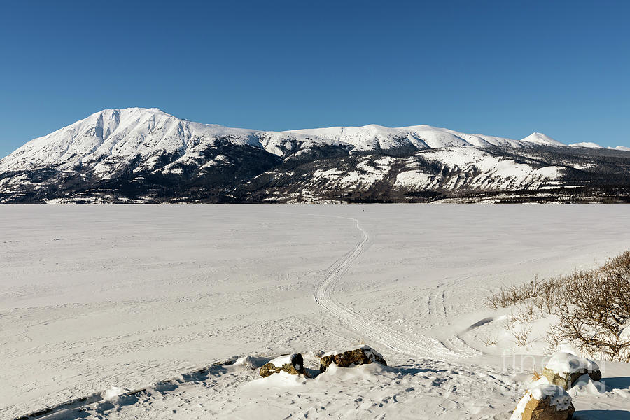 Bennett Lake at Carcross Yukon by Louise Heusinkveld