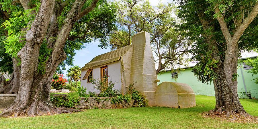 Botanical Photograph - Bermuda Botanical Gardens by Betsy Knapp