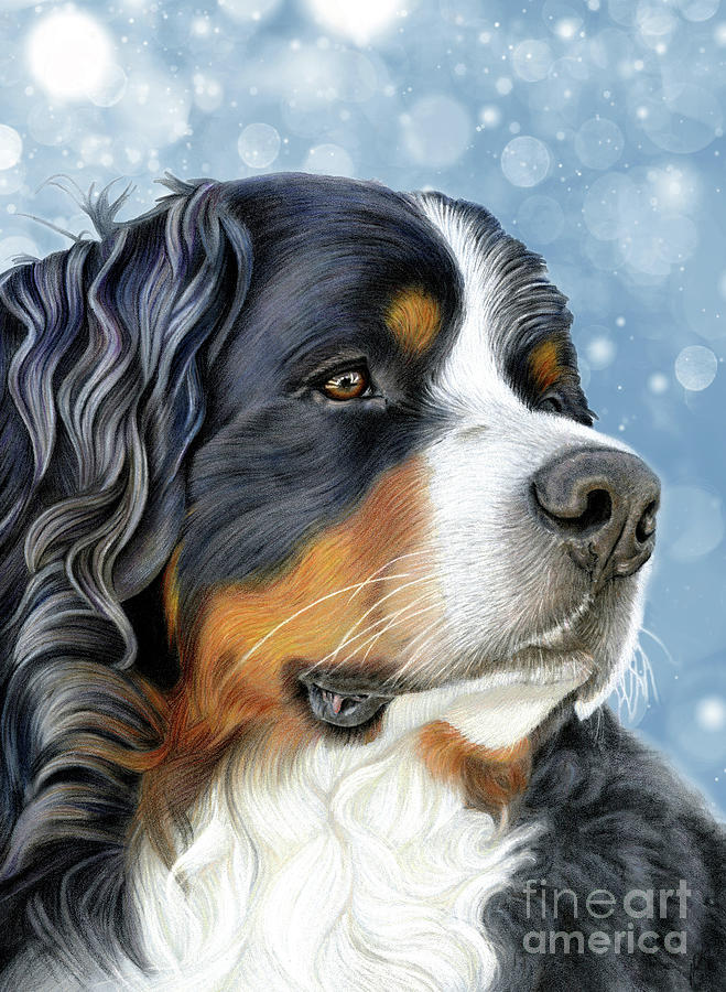 Bernese Mixed Media - Bernese Arctic Blue by Donna Mulley
