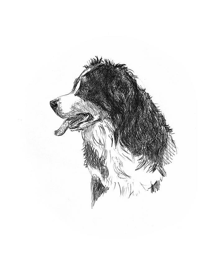 Bernese Mountain Dog by Masha Batkova