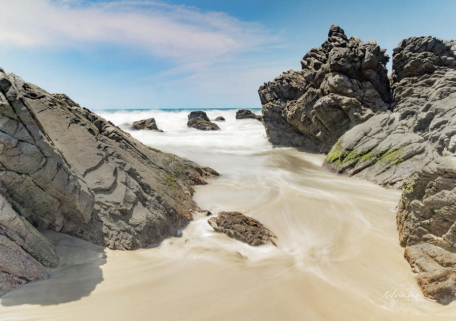 Between the rocks. by Silvia Marcoschamer