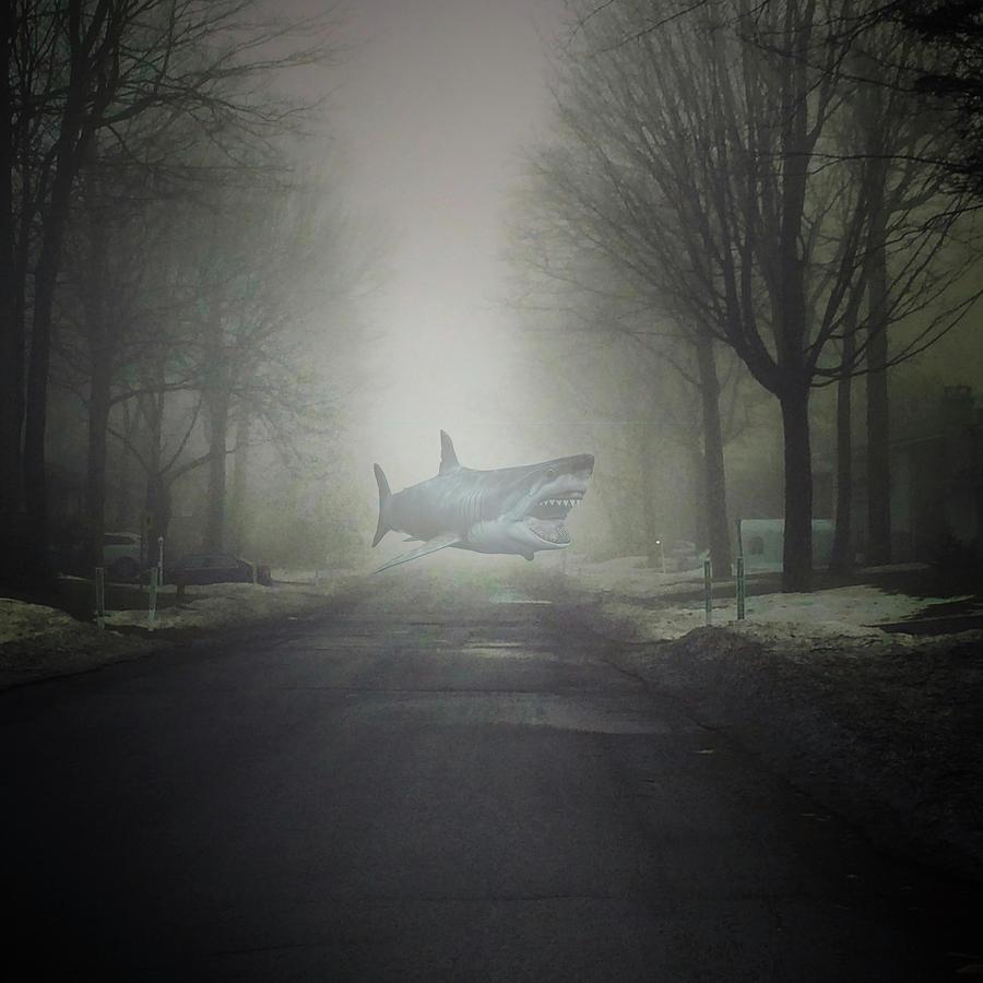 Beware The Sea Fog Bliss      Beware The Sea Fog by Mario MJ Perron