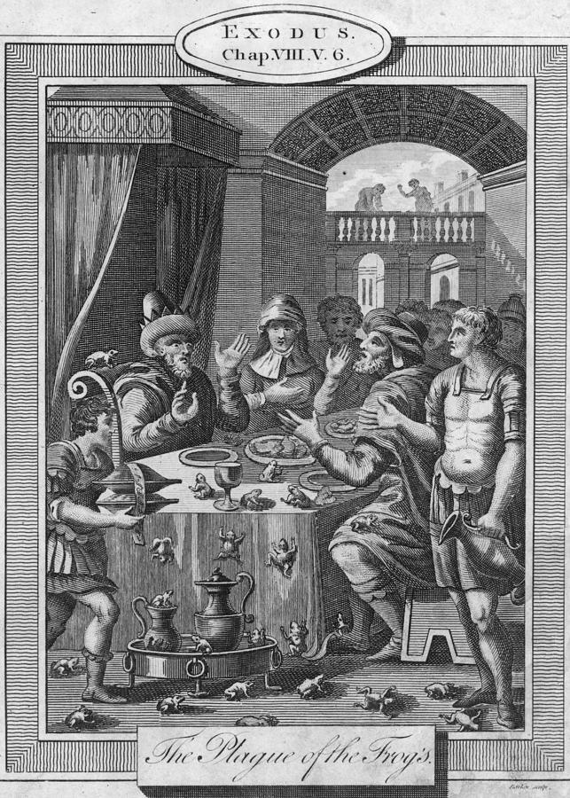 Dining Room Digital Art - Biblical Plague by Hulton Archive
